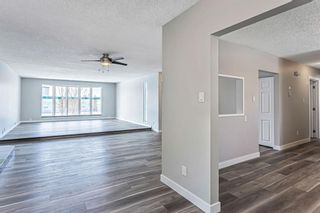 Photo 13: 40 Fyffe Road SE in Calgary: Fairview Detached for sale : MLS®# A1087903