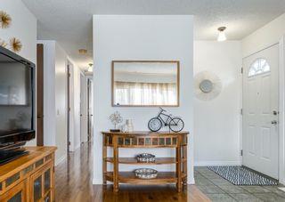 Photo 4: 387 Maitland Crescent NE in Calgary: Marlborough Park Detached for sale : MLS®# A1126572