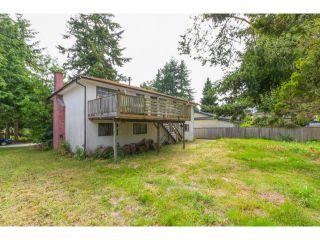 Photo 19: 5291 WILLIAMS Avenue in Tsawwassen: Pebble Hill House for sale : MLS®# V1126867