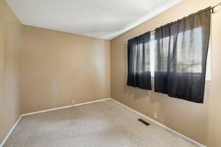 Photo 20: 2719 41A Avenue SE in Calgary: Dover Detached for sale : MLS®# A1132973