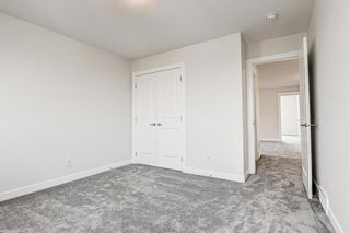 Photo 41: 216 Red Sky Terrace NE in Calgary: Redstone Detached for sale : MLS®# A1125516