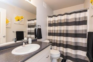 Photo 17: 6 Vander Graaf Place in Winnipeg: Harbour View South Residential for sale (3J)  : MLS®# 202110482