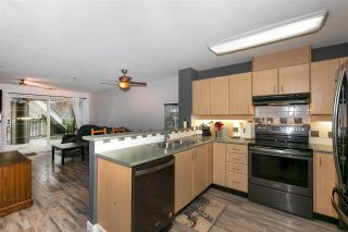 Photo 4: 117 6336 197 STREET in Langley: Willoughby Heights Condo for sale : MLS®# R2518688