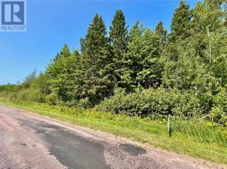 Photo 5: lot 10-1 Route 955 in Murray Corner: Vacant Land for sale : MLS®# M135241