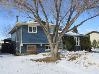Photo 37: 10206 86 Street: Morinville House for sale : MLS®# E4230931