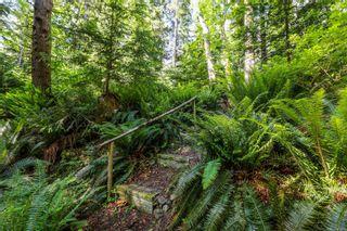 Photo 22: 6510 Eagles Dr in Courtenay: CV Courtenay North Land for sale (Comox Valley)  : MLS®# 878474