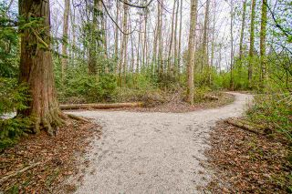 Photo 10: 11375 ROYAL Crescent in Surrey: Royal Heights Land for sale (North Surrey)  : MLS®# R2554360