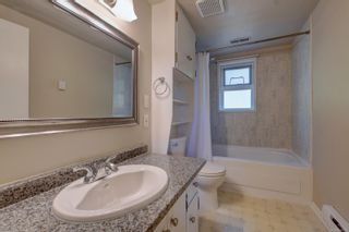 Photo 19: 530 Dunbar Cres in : SW Glanford House for sale (Saanich West)  : MLS®# 878568
