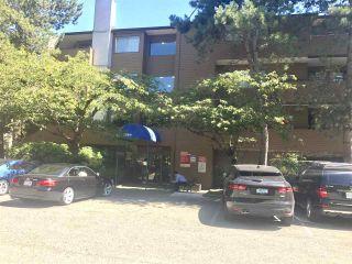 """Photo 2: 304 7297 MOFFATT Road in Richmond: Brighouse South Condo for sale in """"DORCHESTER CIRCLE"""" : MLS®# R2195127"""