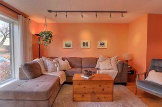 Photo 10: 58032 Range Road 85: Rural St. Paul County House for sale : MLS®# E4266539