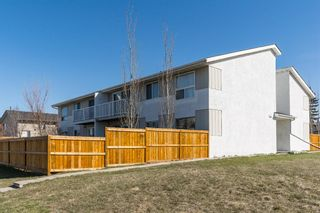 Main Photo: 8 4328 75 Street NW in Calgary: Bowness Apartment for sale : MLS®# A1095541