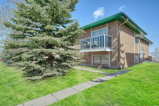 Main Photo: 2 7728 Hunterview Drive NW in Calgary: Huntington Hills Row/Townhouse for sale : MLS®# A1098279