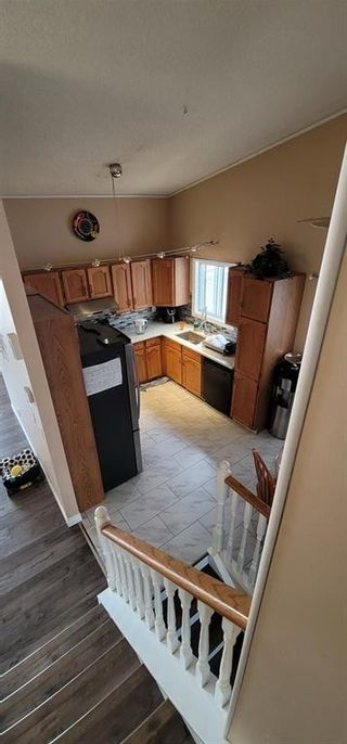 Photo 31: 766 ERINWOODS Drive in Calgary: Erin Woods Detached for sale : MLS®# A1128460