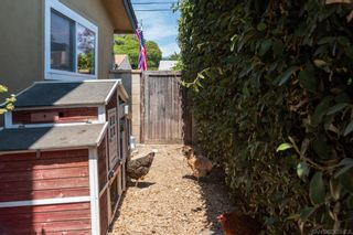 Photo 56: BAY PARK House for sale : 4 bedrooms : 2562 Grandview in San Diego