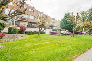 """Photo 1: 32 11900 228 Street in Maple Ridge: East Central Condo for sale in """"MOONLITE GROVE"""" : MLS®# R2576690"""