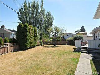 Photo 19: 4021 Oberlin Pl in VICTORIA: SE Gordon Head House for sale (Saanich East)  : MLS®# 648108