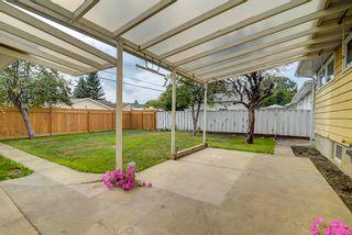 Photo 26: 15921 95 Avenue in Edmonton: Zone 22 House for sale : MLS®# E4259212