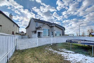 Photo 27: 141 SADDLEMEAD Road in Calgary: Saddle Ridge Detached for sale : MLS®# A1052360