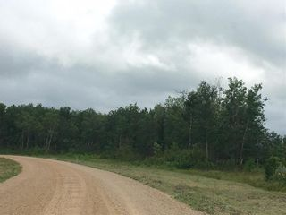 Photo 3: 1 North Winds Road in Alonsa: Lake Manitoba Narrows Residential for sale (R19)  : MLS®# 1912161