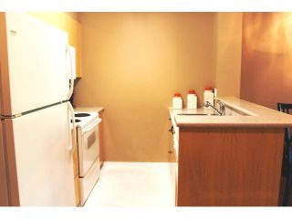 """Photo 16: 309 2763 CHANDLERY Place in Vancouver: Fraserview VE Condo for sale in """"RIVER DANCE"""" (Vancouver East)  : MLS®# V1098255"""