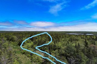 Photo 9: 252 Whitehead Road in Harrietsfield: 9-Harrietsfield, Sambr And Halibut Bay Vacant Land for sale (Halifax-Dartmouth)  : MLS®# 202025766