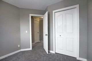 Photo 29: 66 Redstone Road NE in Calgary: Redstone Detached for sale : MLS®# A1071351