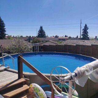 Photo 3: 118 Pinetree Bay NE in Calgary: Pineridge Detached for sale : MLS®# A1132573
