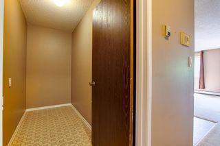 Photo 17: 303 10432 76 Avenue NW in Edmonton: Zone 15 Condo for sale : MLS®# E4262439