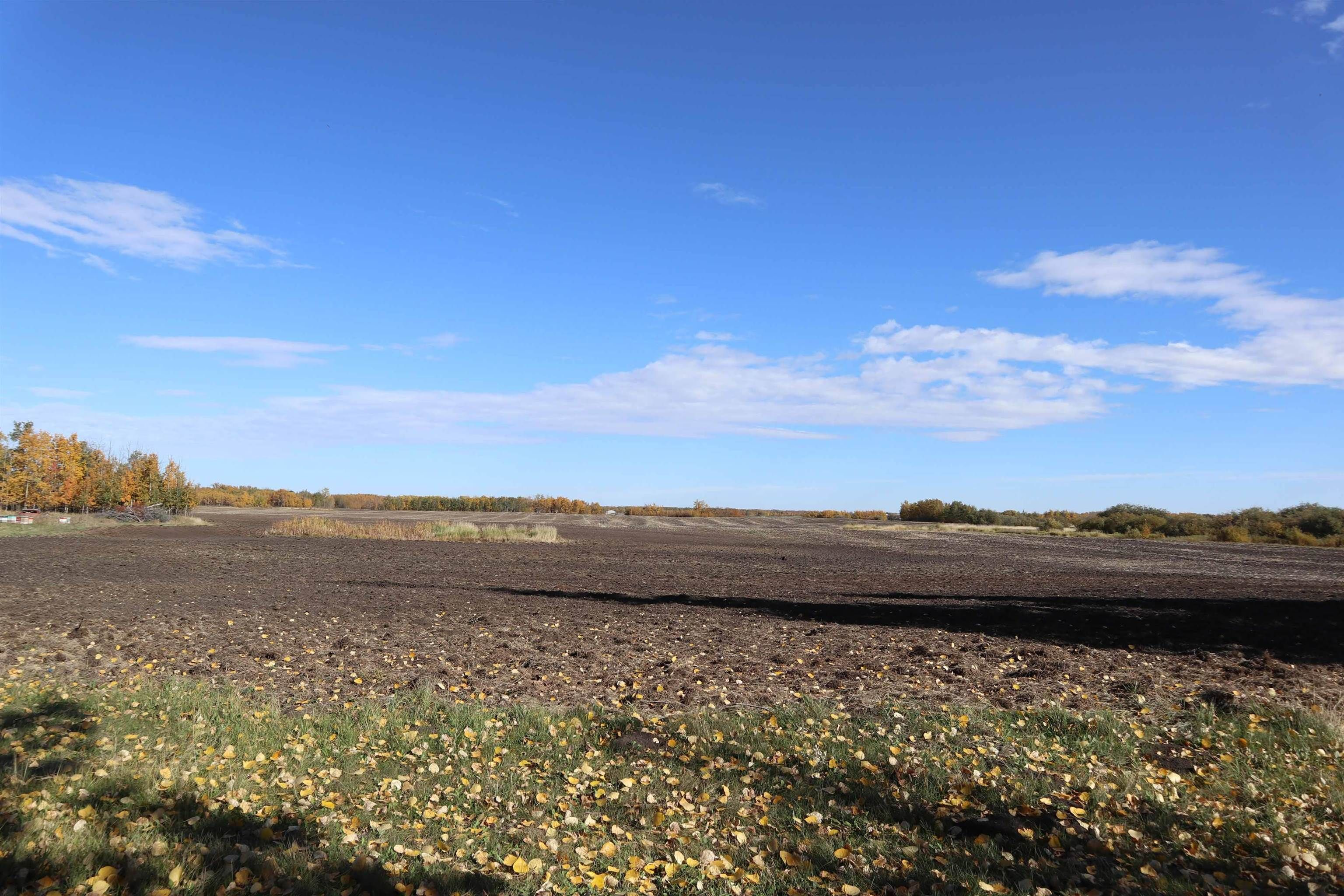 Main Photo: TWP 491 RR 273: Rural Leduc County Rural Land/Vacant Lot for sale : MLS®# E4264523