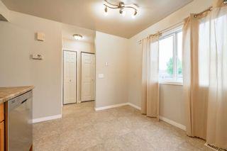 Photo 11: 36 18010 98 Avenue in Edmonton: Zone 20 Townhouse for sale : MLS®# E4248841