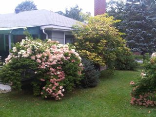 Photo 23: 59 Churchill Street in Bridgewater: 405-Lunenburg County Residential for sale (South Shore)  : MLS®# 202107354