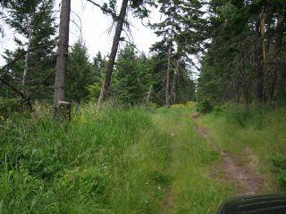 Photo 9: 1328 AC SCOTT ROAD in : Valleyview Lots/Acreage for sale (Kamloops)  : MLS®# 135387