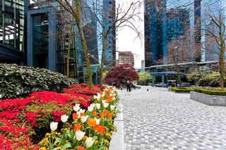 """Photo 17: 804 1050 BURRARD Street in Vancouver: Downtown VW Condo for sale in """"WALL CENTRE"""" (Vancouver West)  : MLS®# R2309129"""