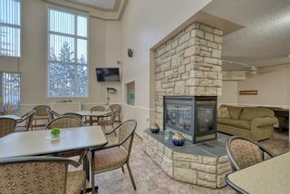 Photo 28: 3117 6818 Pinecliff Grove NE in Calgary: Pineridge Apartment for sale : MLS®# A1069420