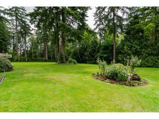Photo 20: 17142 21 Avenue in Surrey: Pacific Douglas House for sale (South Surrey White Rock)  : MLS®# R2176109