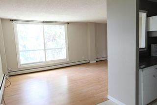 Photo 6: 201 3518 44 Street SW in Calgary: Glenbrook Apartment for sale : MLS®# A1119375