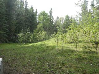 Photo 10: 2 miles west of Dartique Hall in COCHRANE: Rural Rocky View MD Rural Land for sale : MLS®# C3545361