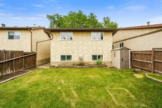 Photo 41: 4322 38 Street in Edmonton: Zone 29 House for sale : MLS®# E4255616