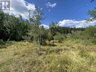 Photo 14: DL2350 TIMOTHY LAKE ROAD in Lac La Hache: Vacant Land for sale : MLS®# R2610977