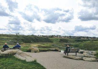 Photo 44: 103 Beddington Way NE in Calgary: Beddington Heights Detached for sale : MLS®# A1099388