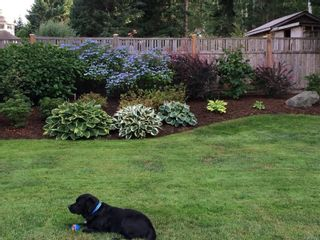Photo 56: 2257 June Rd in : CV Courtenay North House for sale (Comox Valley)  : MLS®# 865482