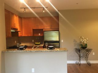 """Photo 8: 211 2083 W 33RD Avenue in Vancouver: Quilchena Condo for sale in """"DEVONSHIRE HOUSE"""" (Vancouver West)  : MLS®# R2115581"""