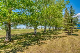 Photo 43: 251046 Rge Rd 263: Rural Wheatland County Residential Land for sale : MLS®# A1117285