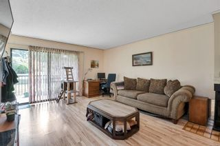 Photo 7: 118 585 S Dogwood St in Campbell River: CR Campbell River Central Condo for sale : MLS®# 879212