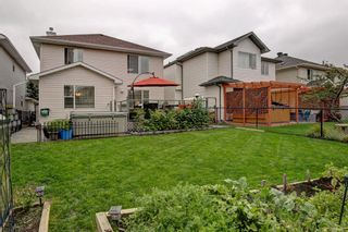 Photo 30: 100 Mt Selkirk Close SE in Calgary: McKenzie Lake Detached for sale : MLS®# A1063625