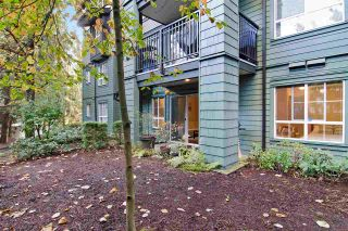 """Photo 15: 207 9098 HALSTON Court in Burnaby: Government Road Condo for sale in """"SANDLEWOOD"""" (Burnaby North)  : MLS®# R2005913"""