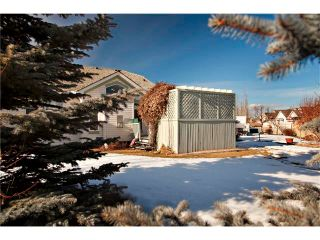 Photo 24: 226 CHAPARRAL Villa(s) SE in Calgary: Chaparral House for sale : MLS®# C4049404