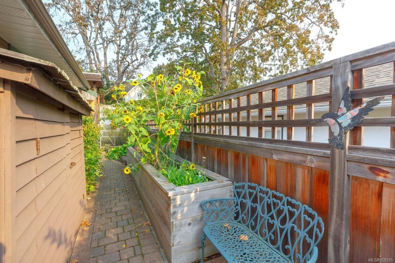 Photo 37: Photos: 1542 Westall Ave in : Vi Oaklands House for sale (Victoria)  : MLS®# 858195