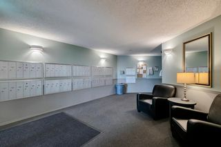 Photo 23: #106 10 Dover Point SE in Calgary: Dover Apartment for sale : MLS®# A1152097