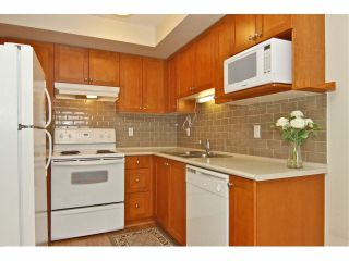 """Photo 7: 301 8880 202ND Street in Langley: Walnut Grove Condo for sale in """"THE RESIDENCES AT VILLAGE SQUARE"""" : MLS®# F1409404"""